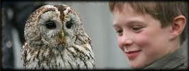 Huntly Falconry Centre